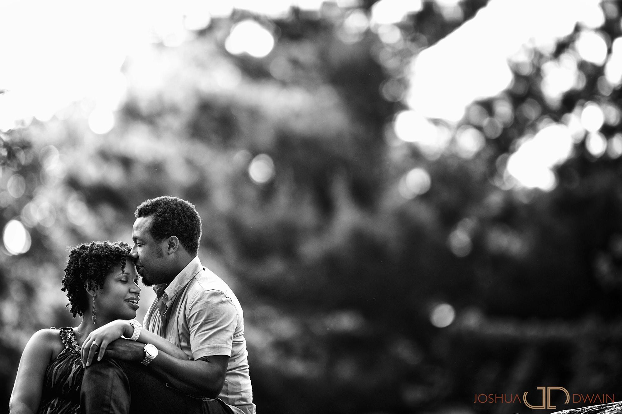 betty-garnel-001-central-park-new-york-city-ny-engagement-photographer-joshua-dwain-20110527_bg_009