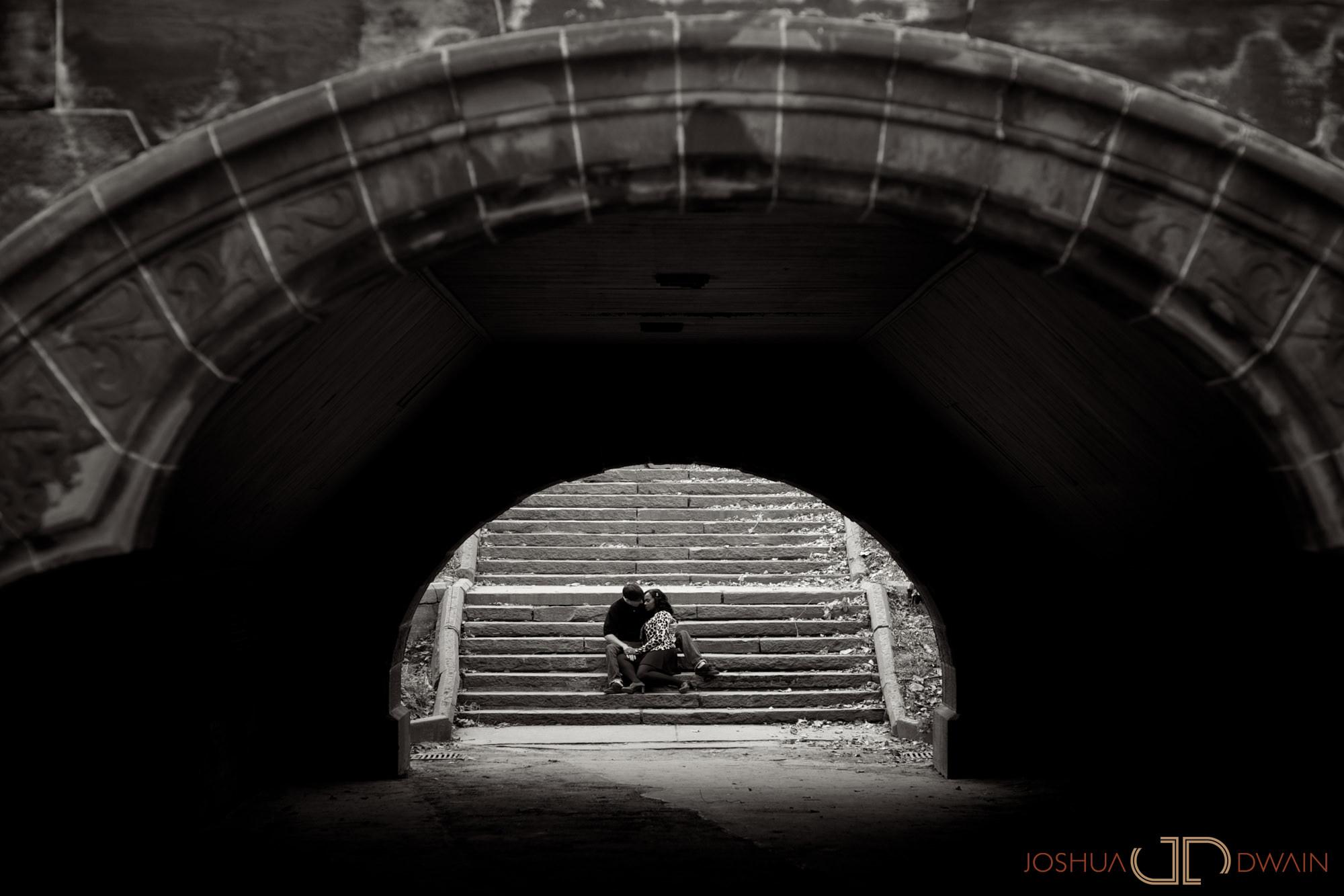 fritzie-stephen-003-central-park-new-york-city-ny-engagement-photographer-joshua-dwain-2011-11-05_fs_014
