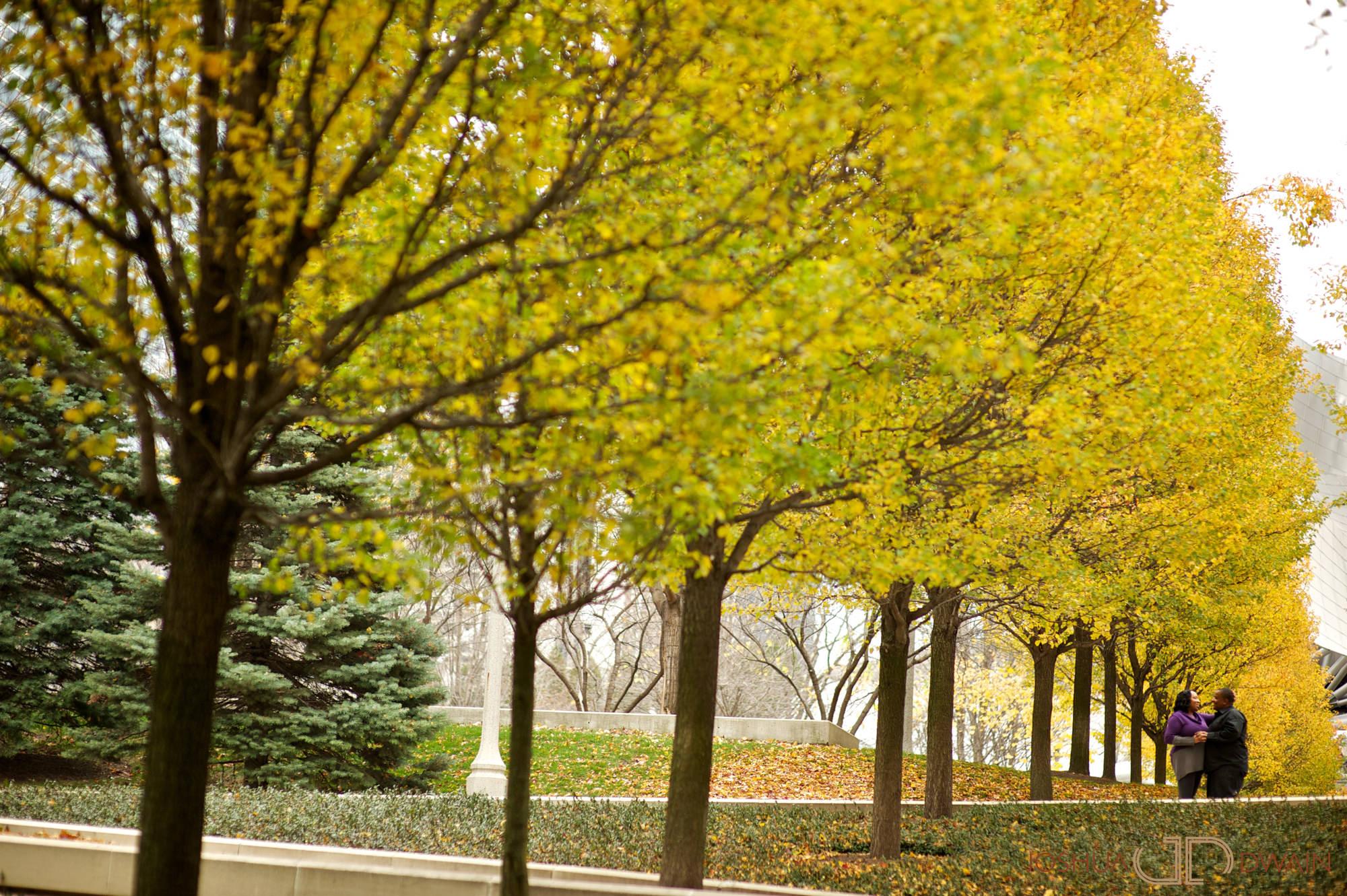 monique-john-002-chicago-il-engagement-photographer-joshua-dwain-2011-11-19_mj_012