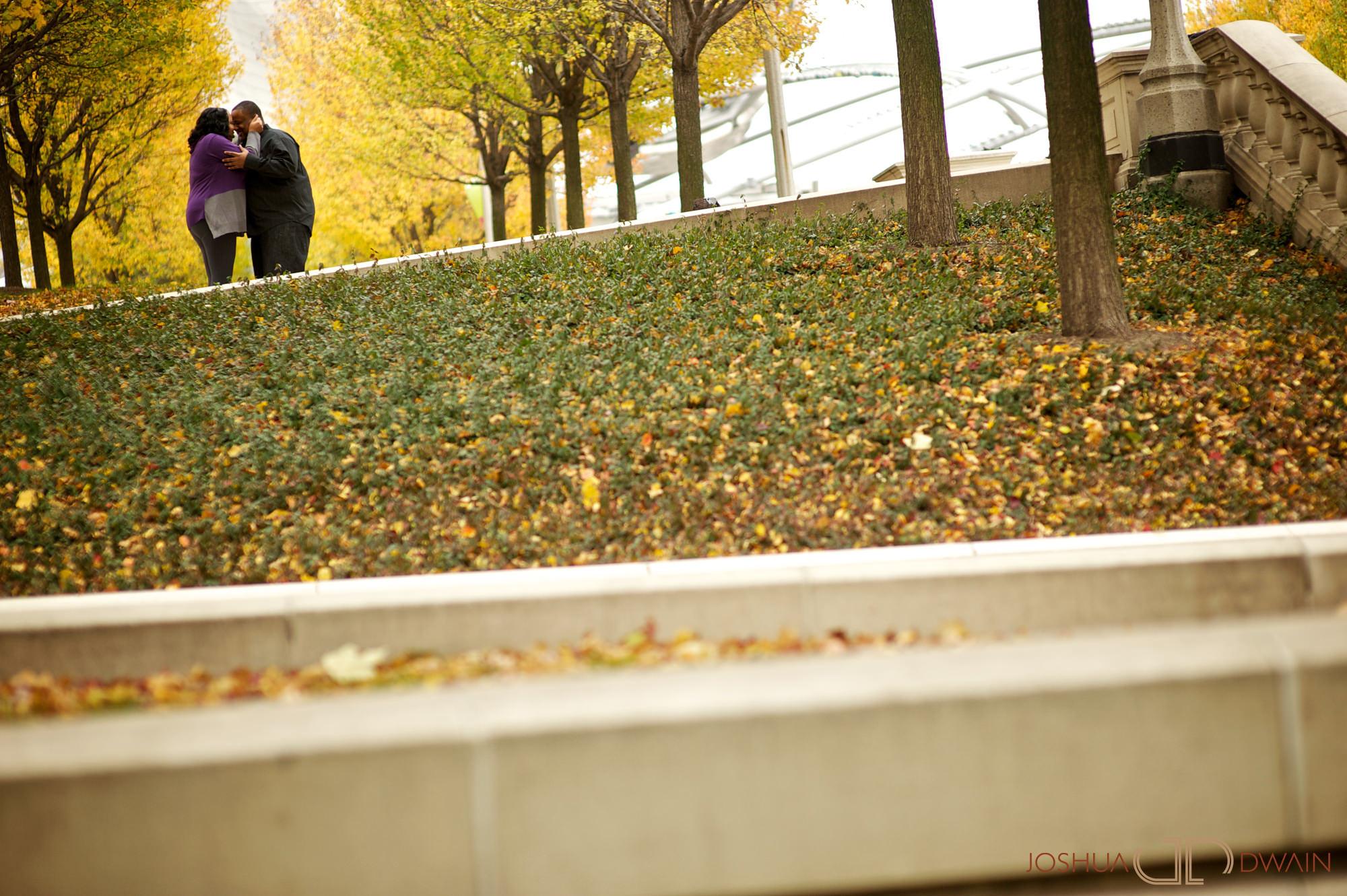 monique-john-003-chicago-il-engagement-photographer-joshua-dwain-2011-11-19_mj_014