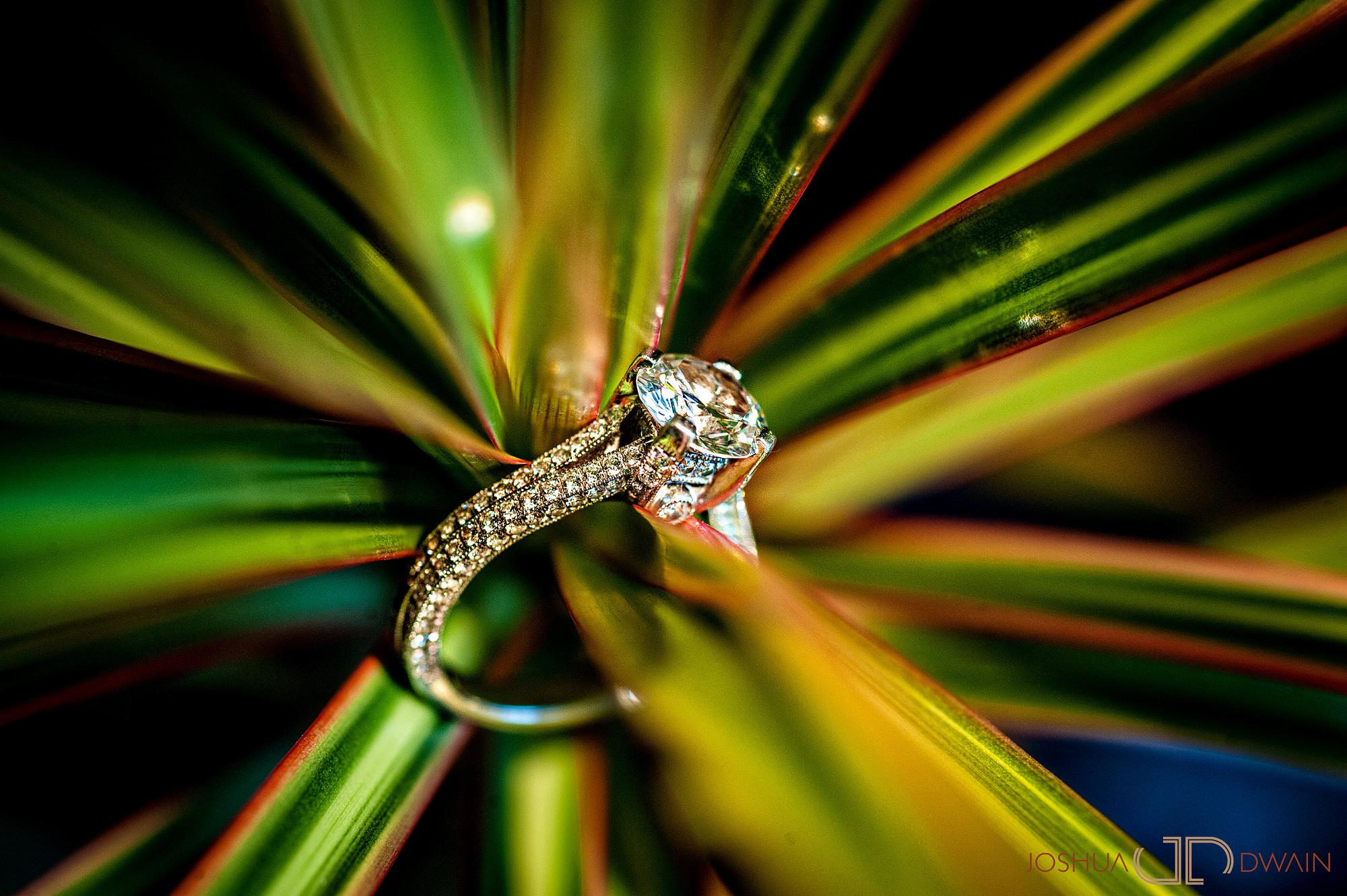 ingrid-keith-002-Glenn Foerd Mansion-philadelphia-wedding-photographer-joshua-dwain