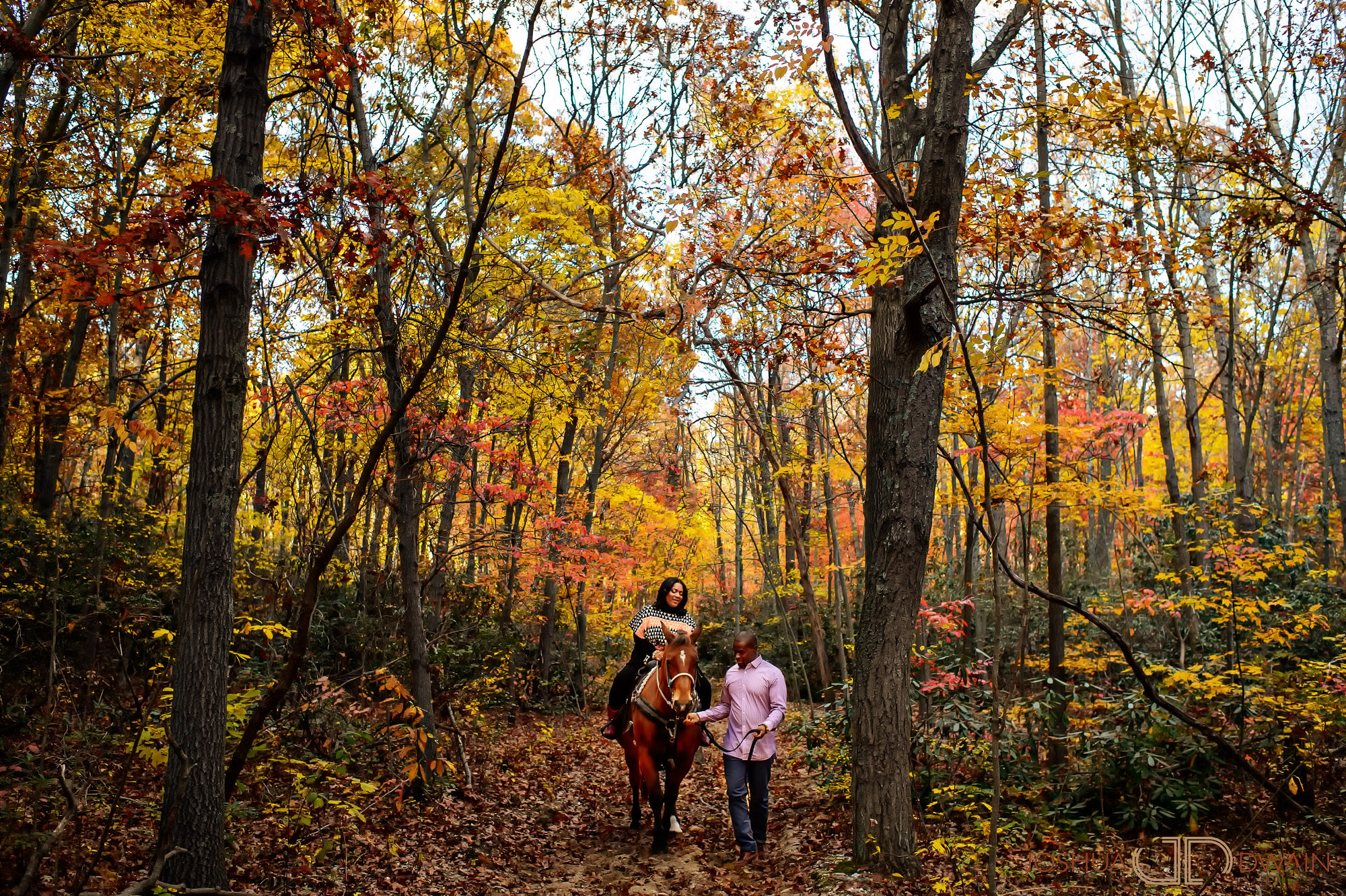 ashley-william-003-Sweet-Hills-Riding-Center -Long-Island-NY-engagement-wedding-photographer-joshua-dwain