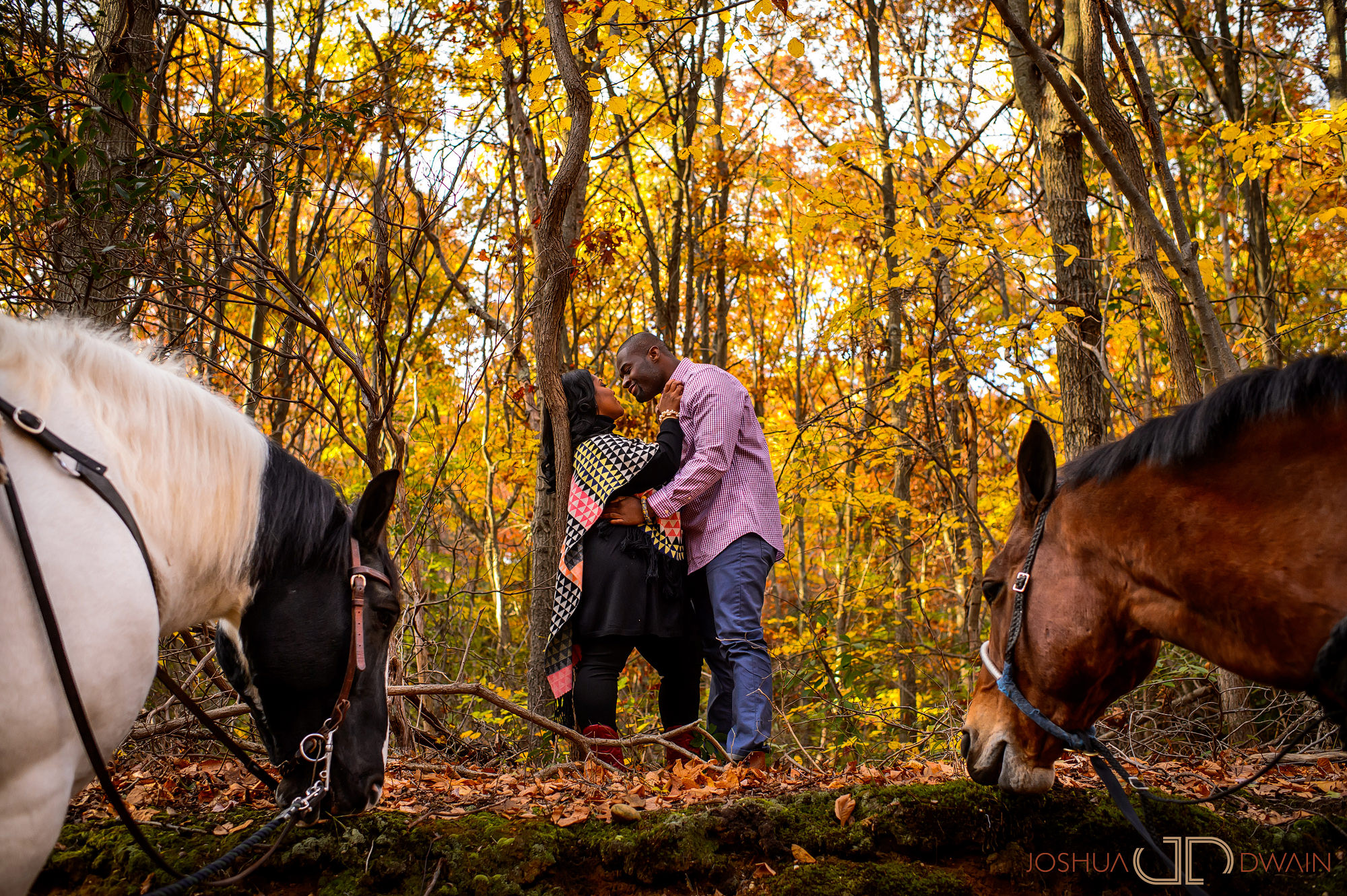 ashley-william-007-Sweet-Hills-Riding-Center -Long-Island-NY-engagement-wedding-photographer-joshua-dwain