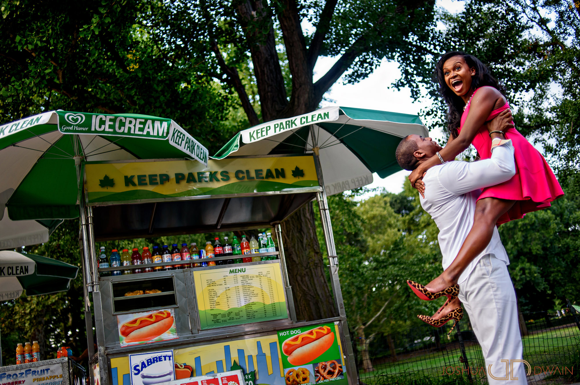 sandra-otwan-005-central-park-lincoln-center-new-yorkpre-wedding-photos-joshua-dwain