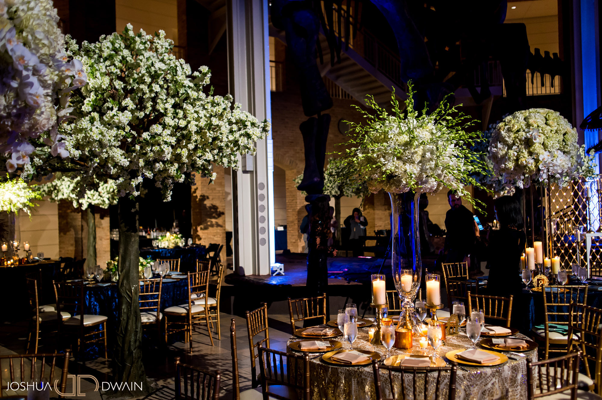 Alena & Prince's Wedding at the Fernbank Museum of Natural History