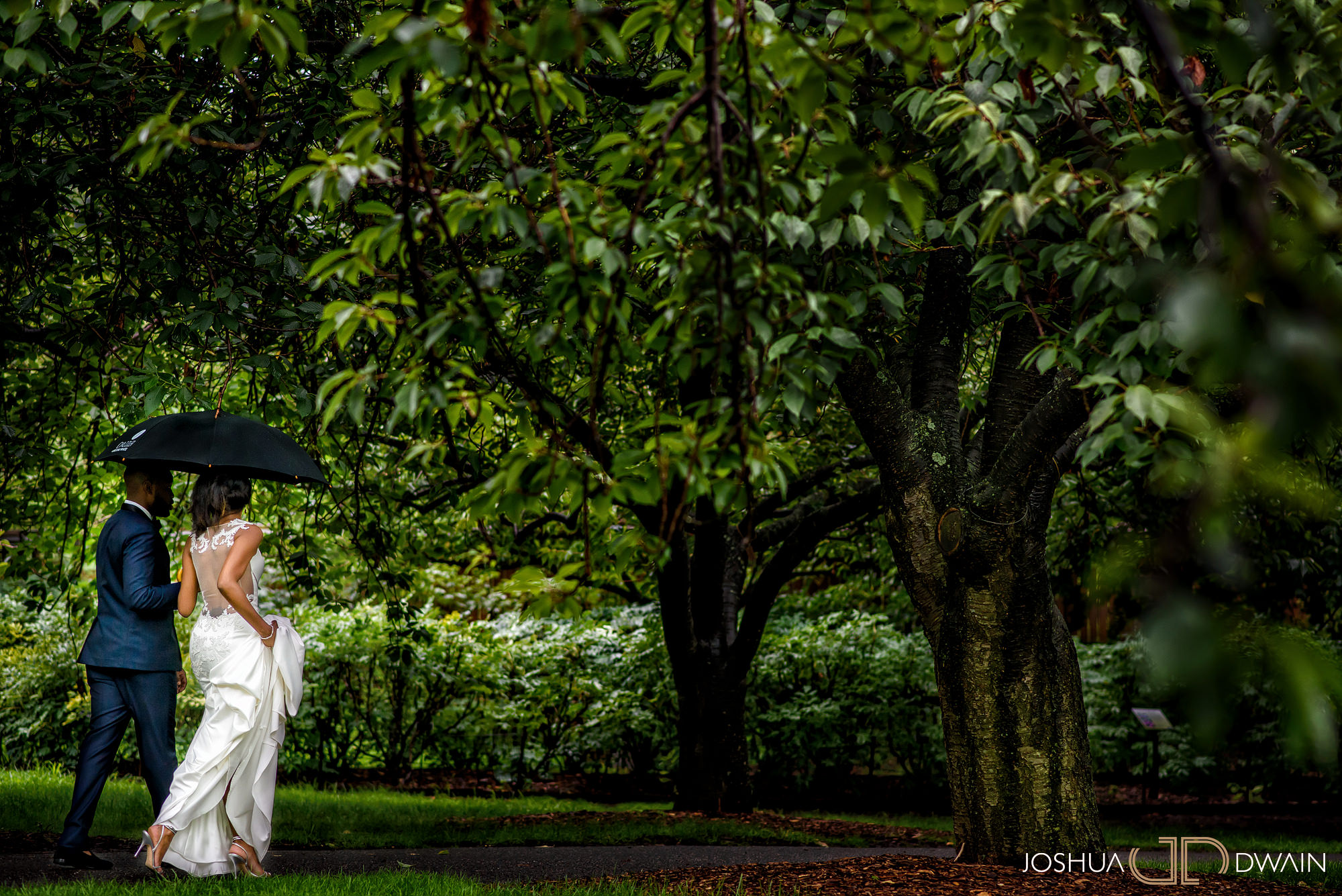alicia-kola-016-brooklyn-botanical-garden-atrium-wedding-photos-joshua-dwain