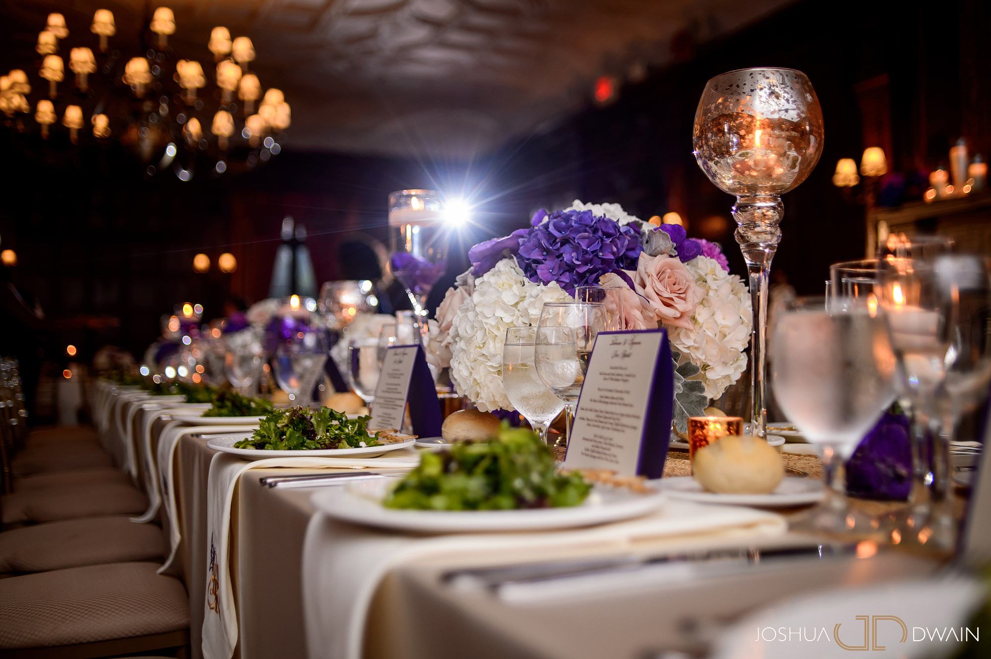 latresse-kareem-031-deseversky-mansion-black-long-island-wedding-photographer-joshua-dwain